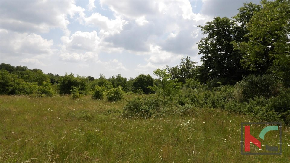 Kanfanar, building land 1891m2 in an interesting location