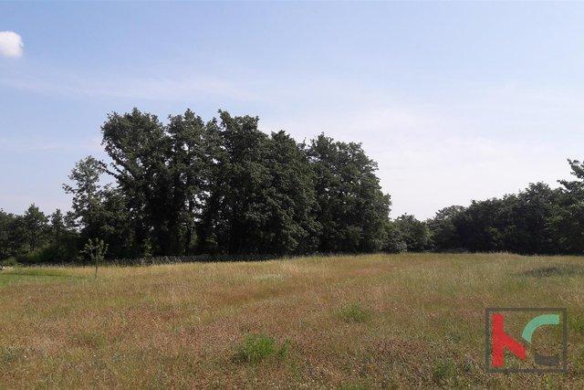 Svetvinčenat, Režanci urbanized land 1900m2 and 2137m2 agricultural land