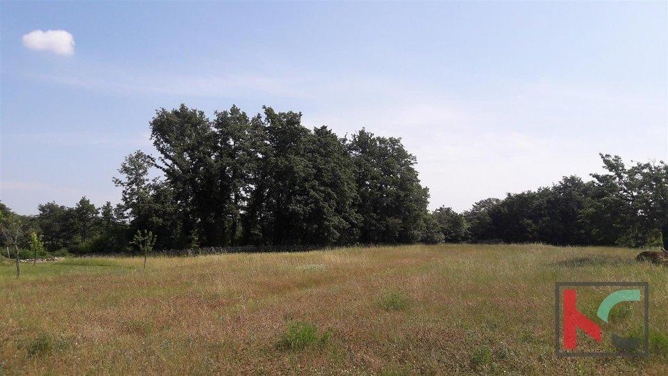 Svetvinčenat, Režanci urbanized Land 1900m2 und 2137m2 landwirtschaftlichen Flächen