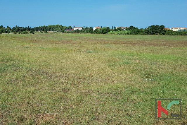 Istra, Fažana prekrasno zemljište 13500m2 na odličnoj lokaciji