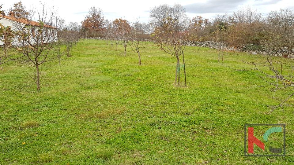 Istra, zemljište 1165m2 na mirnoj lokaciji u Orihima