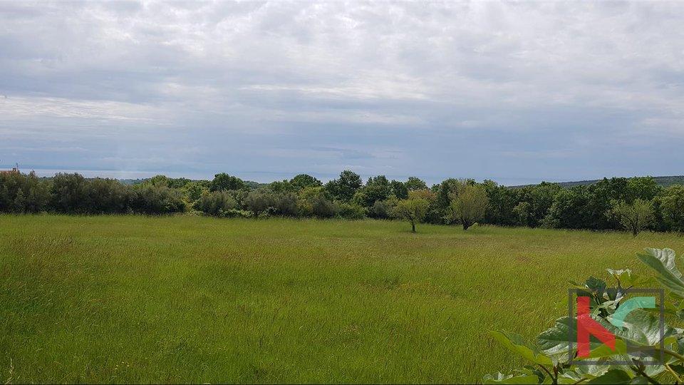Building land 2030m2, open view