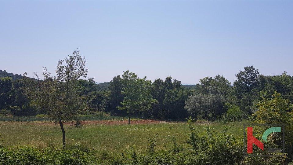 Rovinj, Bale, Golaš attractive building plot 2.290m2