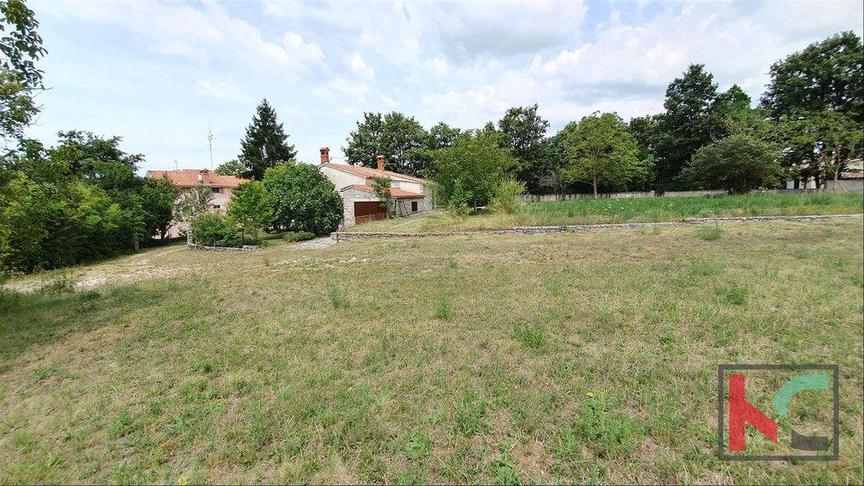 Zemljišče, 13674 m2, Prodaja, Žminj