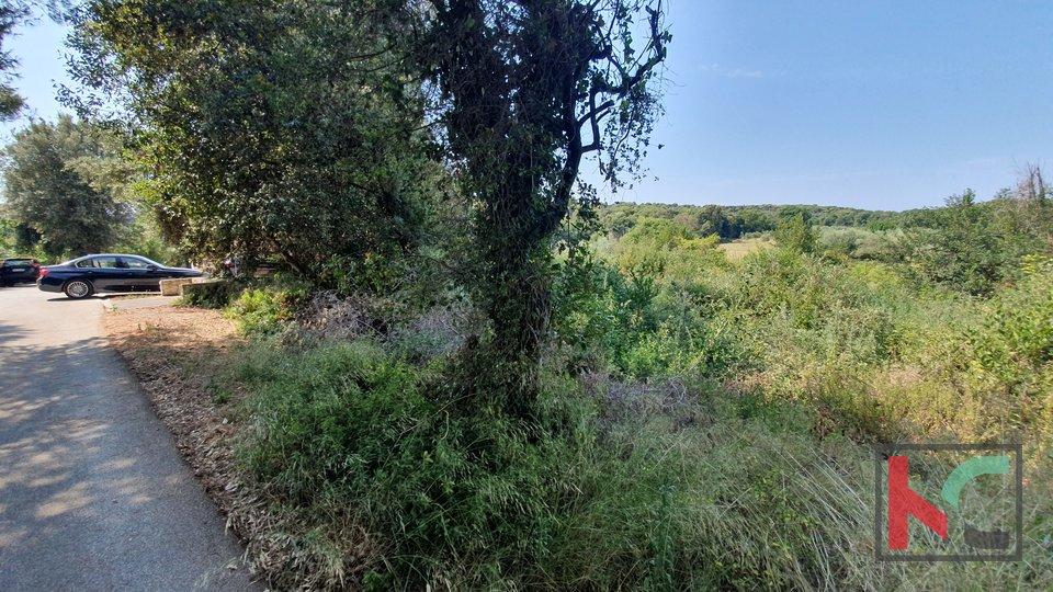 Istra -  Medulin - Banjole, građevinsko zemljište 1646m2 sa infrastrukturom, 150m od mora