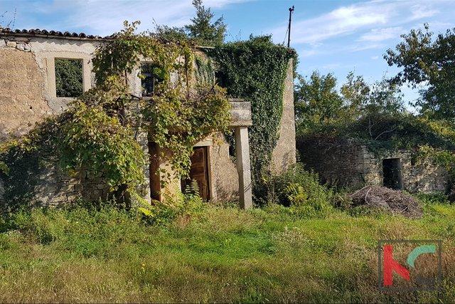 Gračišće, Lančišće old Istrian house 300m2 garden 6856m2