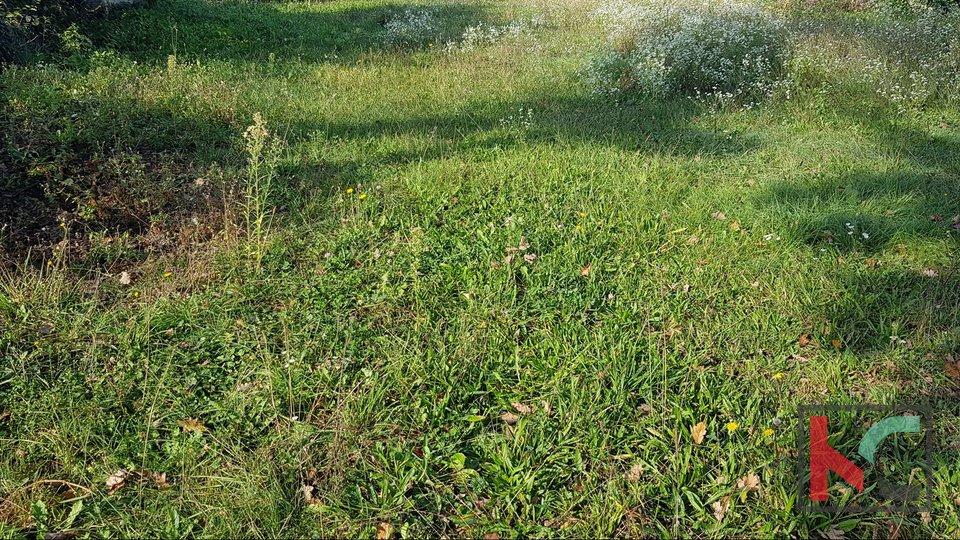 Gračišće, Lančišće altes istrianisches Haus 300m2 Garten 6856m2