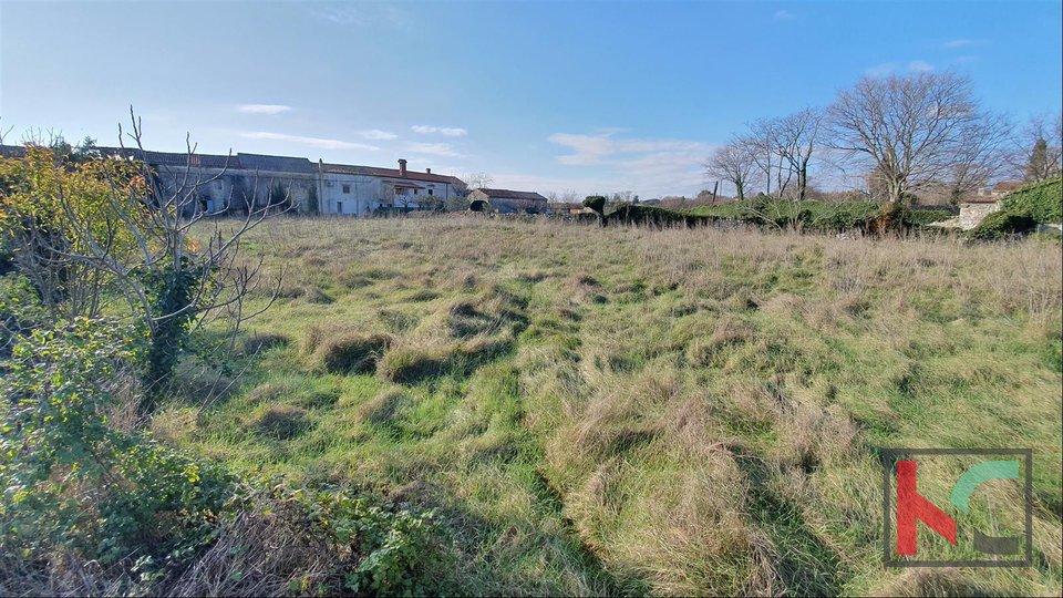 Istrien, Barban zwei alte Häuser auf 1800m2 Baugrundstück und GELEGENHEIT