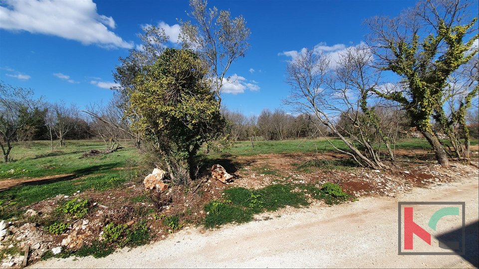 Istria - Marcana - Krnica, building land (785m2-797m2) in an attractive location