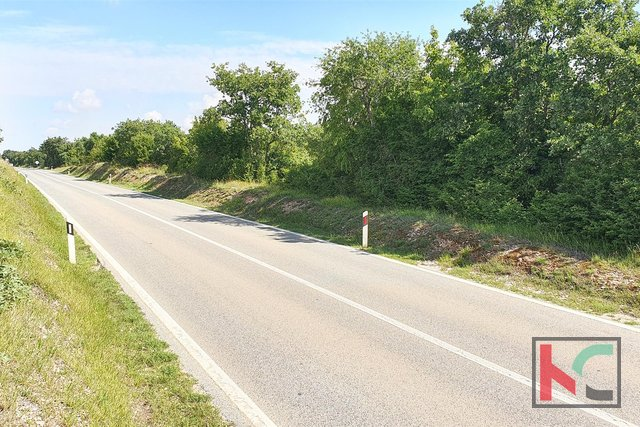 Istra - Vodnjan - Krnjaloža zemljište 21.029m2 odličnog formata uz samu prometnicu