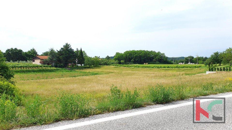 Baugrundstück 423m2 in ruhiger Lage von Istrien (Gračišće)