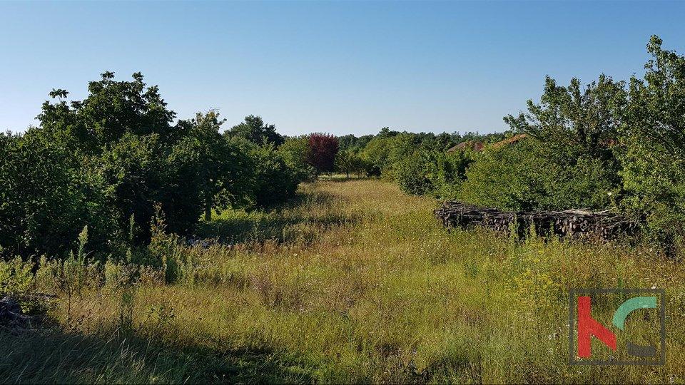 Istra, Svetvinčenat, Režanci građevinsko zemljište 3197m2