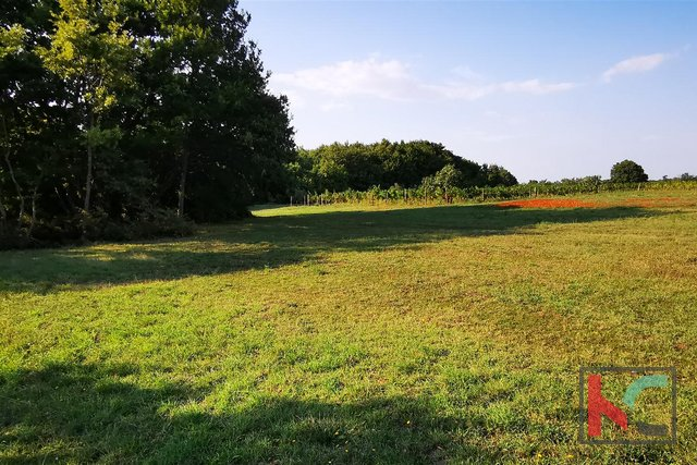 Istria, Marcana, building land 998m2 in a quiet location