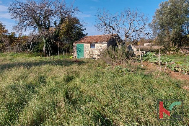 Istria, Rovinj, Veštar agricultural land 3187m2 with a building of 28m2