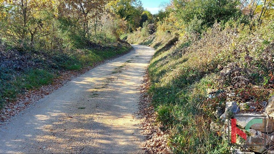 Istria, Rovinj, Palud agricultural land 4128m2