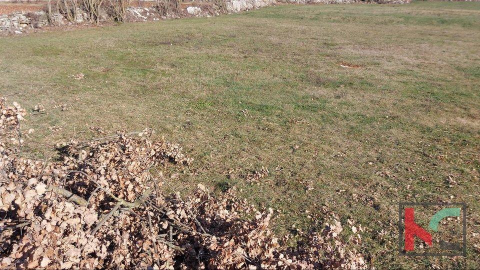 Istrien, Kanfanar Bauland 716m2 in verschiedenen Größen