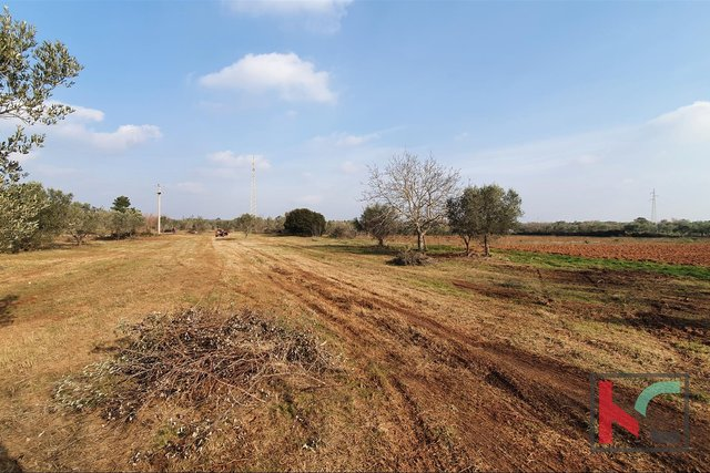 Istria - Fazana, land 479m2 with water on the land