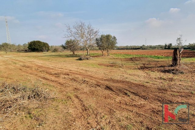 Istria - Fazana, agricultural land 516m2 with water on the land