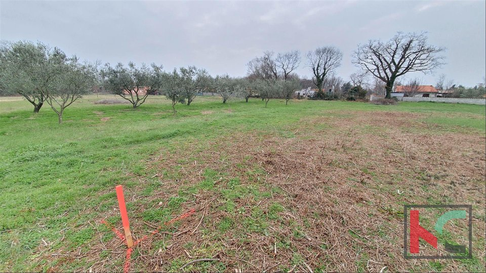 Pula, several weekend plots with water, various sizes in a quiet location II 13 € / m2