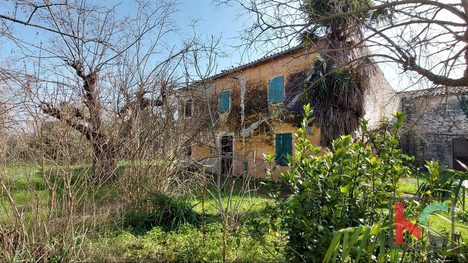 Rovinj, house 360m2 with garden 1159m2 for renovation