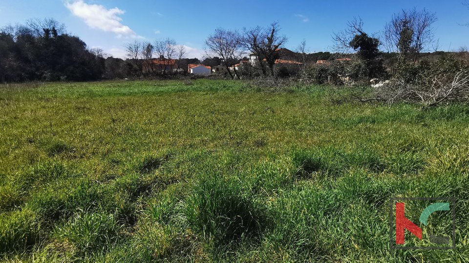 Istria, Liznjan, building land 478m2 regular shape + 168m2 road