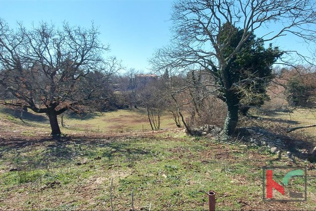 Istria, Svetvincenat, building and agricultural land 9010m2