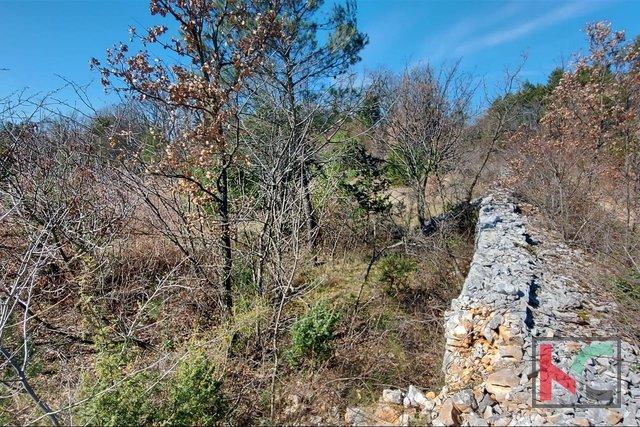 Istrien, Svetvincenat, Štokovci Ackerland 7870m2