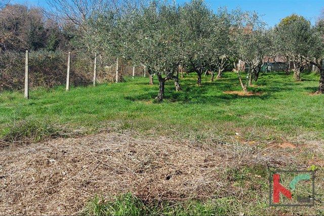 Istra, Banjole, Volme poljoprivredno zemljište 640m2