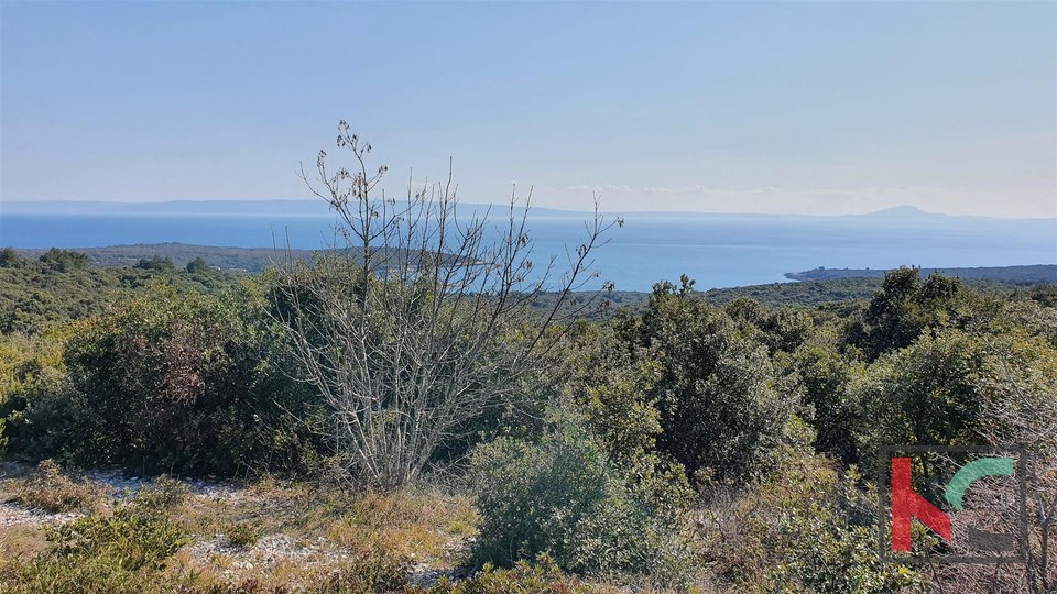 Istra - Pavićini - Duga uvala, zemljište 9000m2 sa panoramskim pogledom na more