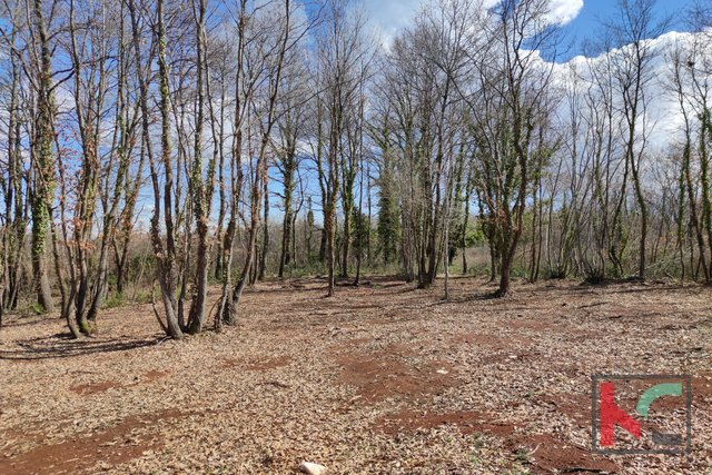 Istria - Barban, building land 739m2