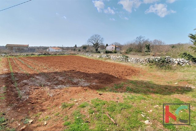 Istria - Barban, 4 old houses in a spacious garden
