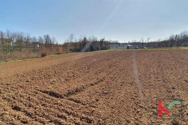 Istria - Svetvincenat, combined building-agricultural land 3369m2