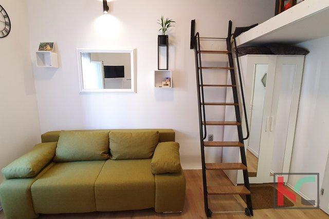 Apartment reconstruction - Pula