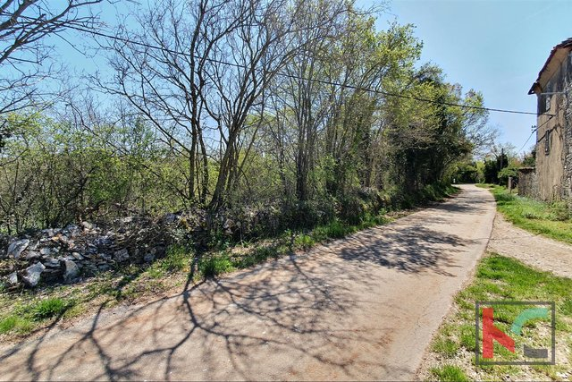 Istria - Svetvincenat, land 5701m2 ideal format for construction