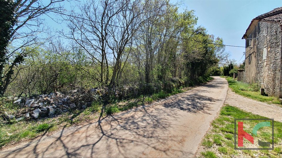Istria - Svetvincenat, land 5701m2 ideal format for construction