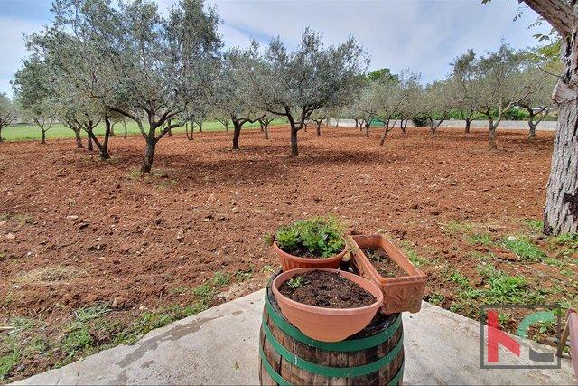 Istria, Galižana terreno edificabile 2026m2 II VISTA MARE