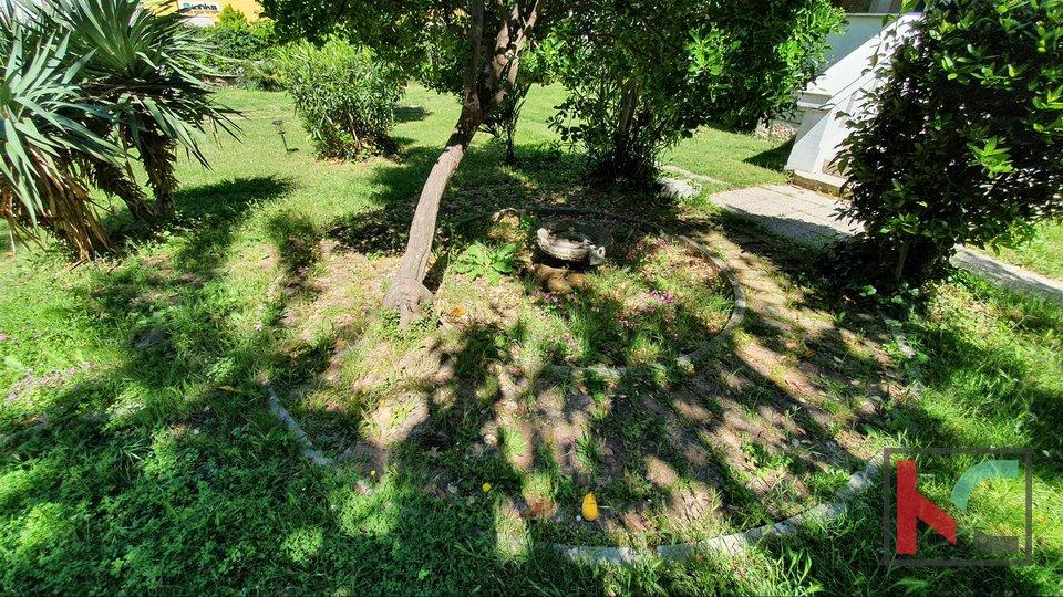 Veruda, Pula, stan u šarmantnoj austrougarskoj vili sa 188m2 vrta