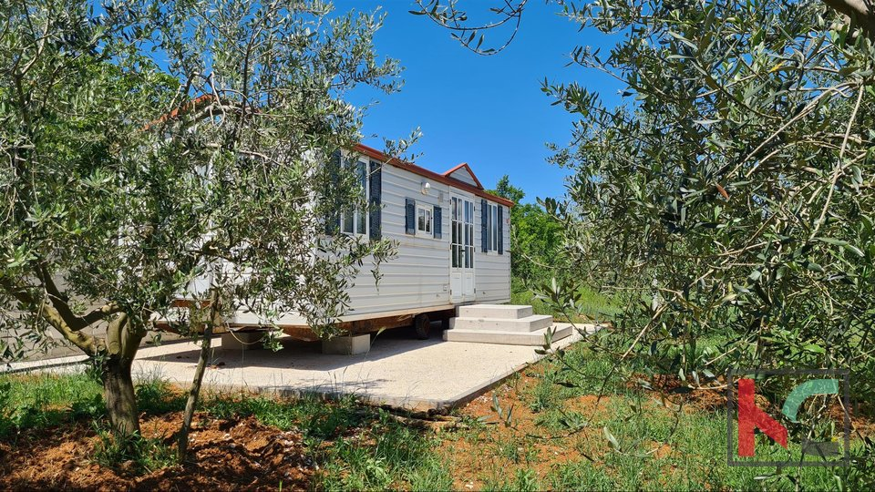 Istria- Medulin, olive grove on agricultural land 4.510m3 with, II Mobile home II electricity on the plot