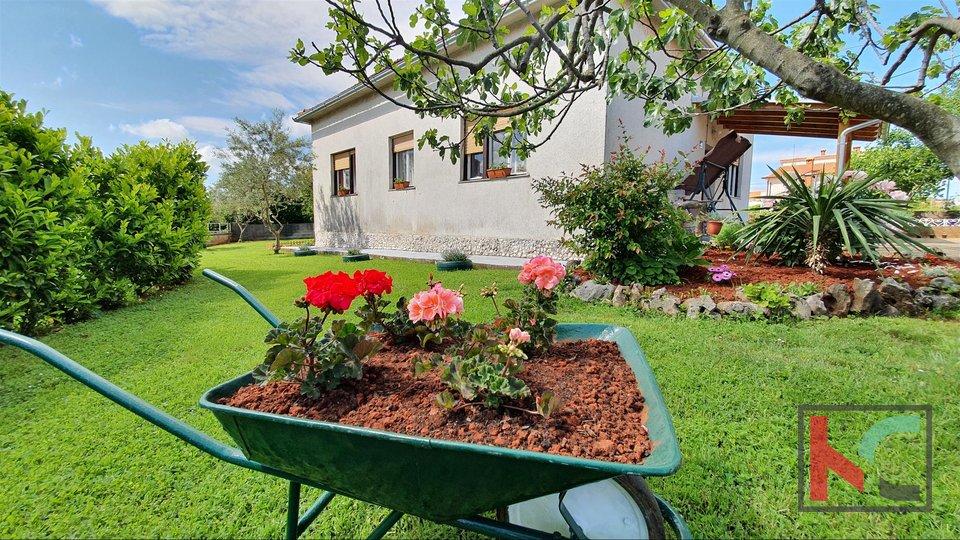 Истрия - Маркана, дом 102м2 на 655м2 ландшафтный сад