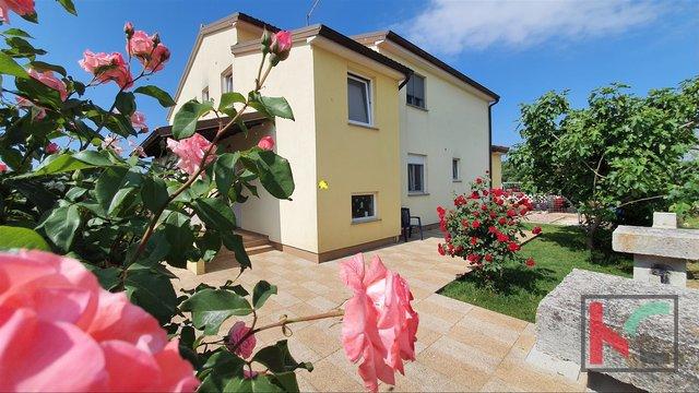 Istrien, Marčana, Loborika geräumiges Einfamilienhaus mit drei Wohnungen Garten 683m2