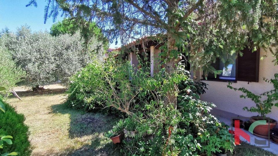 Istria, Liznjan, Sisan, house with pool and garden 885m2