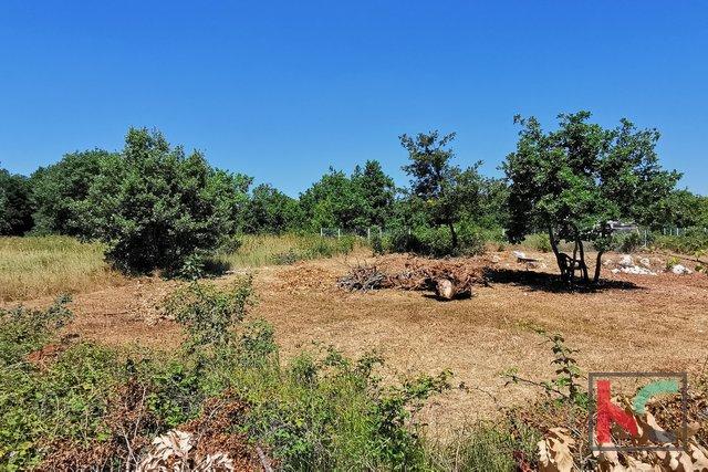 Istra, LIžnjan, Valtura, kmetijsko zemljišče 582m2