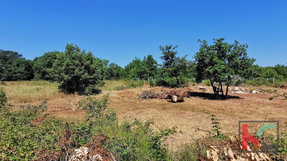 Istra, LIžnjan, Valtura, poljoprivredno zemljište 582m2