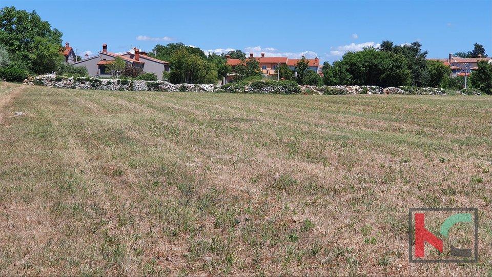 Istra, građevinsko zemljište 2143m2 odlična lokacija nedaleko Svetvinčenta