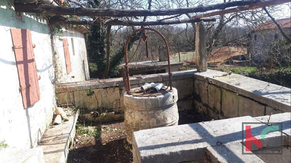 Istra, rijetka samostojeća Istarska kamena starina na 687m2 okućnice, nedaleko Rovinja