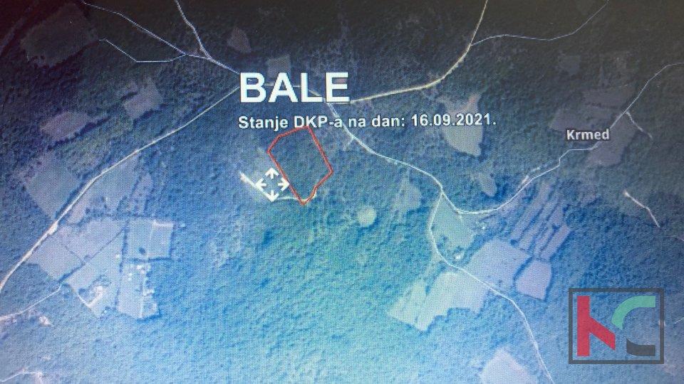 Istra, Bale- poljoprivredno zemljište, šuma