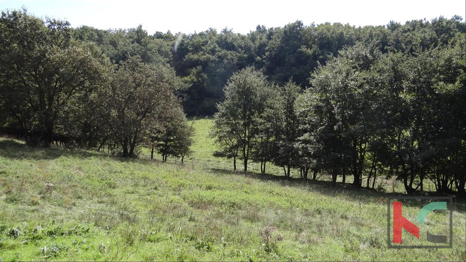 Žminj, urbanized and agricultural land 72.561 m2 in one piece