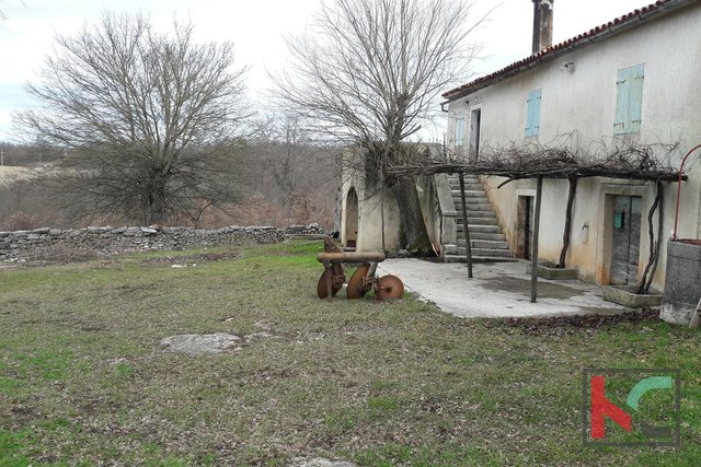 Žminj, detached house 150 m2 on a large plot 1604 m2