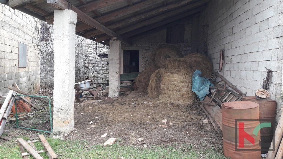 Žminj, detached house 150 m2 on a large plot 1604 m2