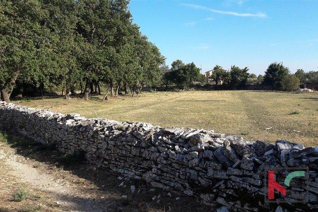 Rovinj, Kanfanar, građevinska zemljišta, 866m2-910m2